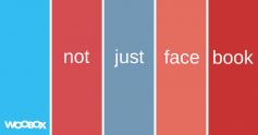Not Just Facebook (4)